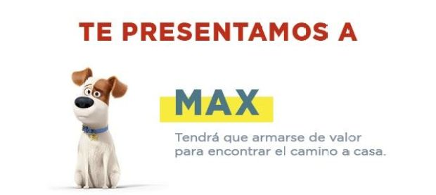 MaxMascotas - MagaZinema