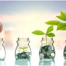 Money Investment, Magazine of Information