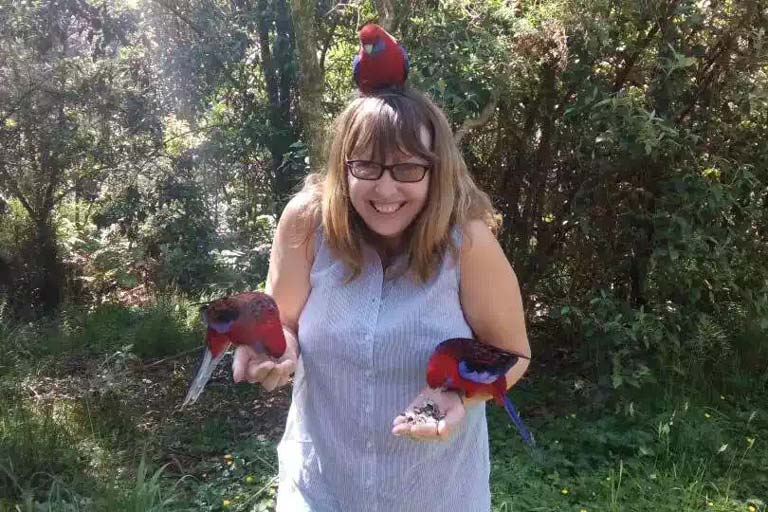 Feeding wild birds in Melbourne