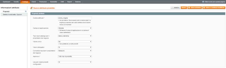 Gestione attributi Magento Admin