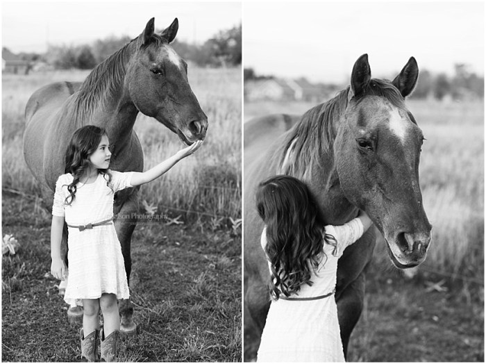 photos with horses