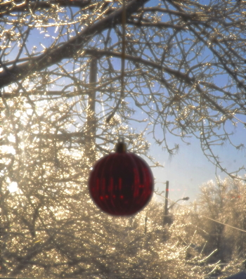 2013 Christmas Ice