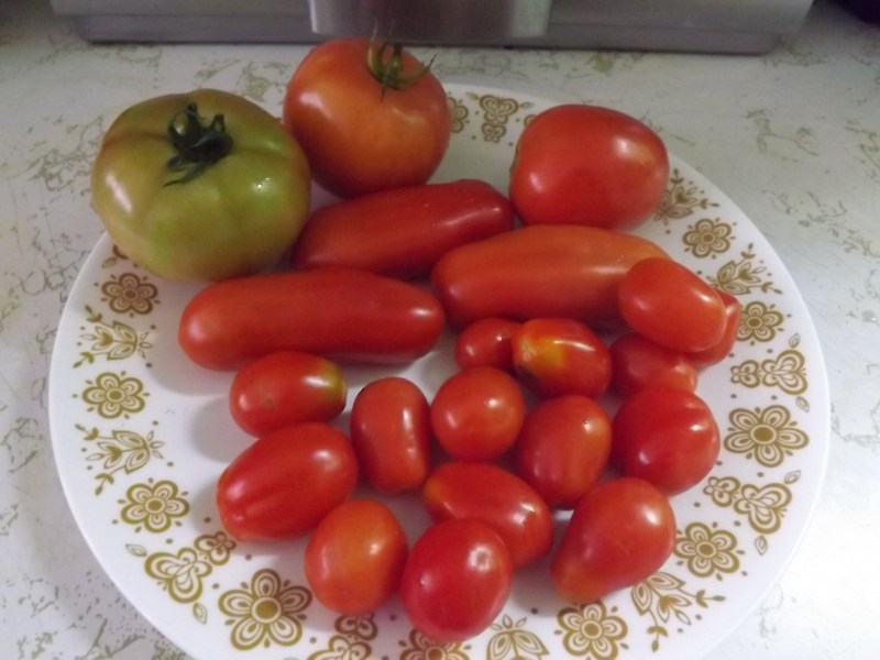 different varieties of tomatoes on a plate