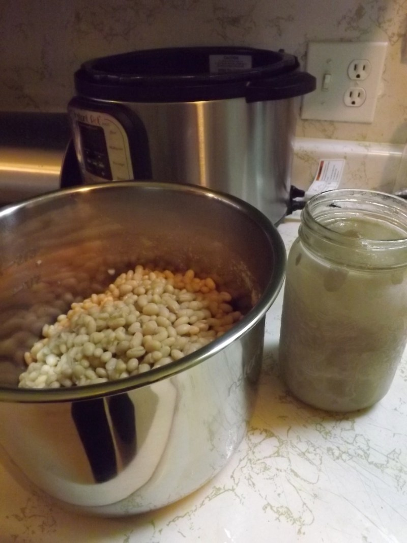 navy beans and mason jar of frozen water