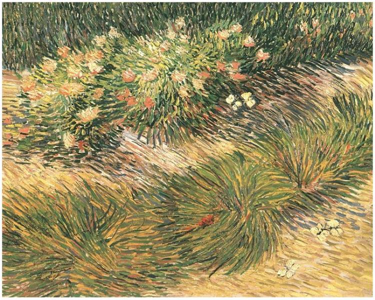 Grass-and-Butterflies