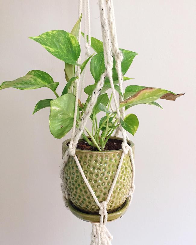 macreme plant holder maggie whitley