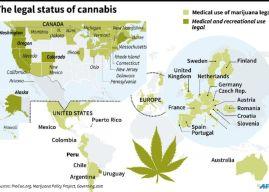 Canada to Pardon Pot Possession As It Legalises Marijuana