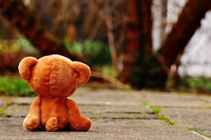 bear-1272799_960_720