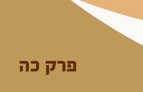 שמואל א פרק כה – דוד, נבל ואביגיל