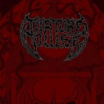 Torture-cover