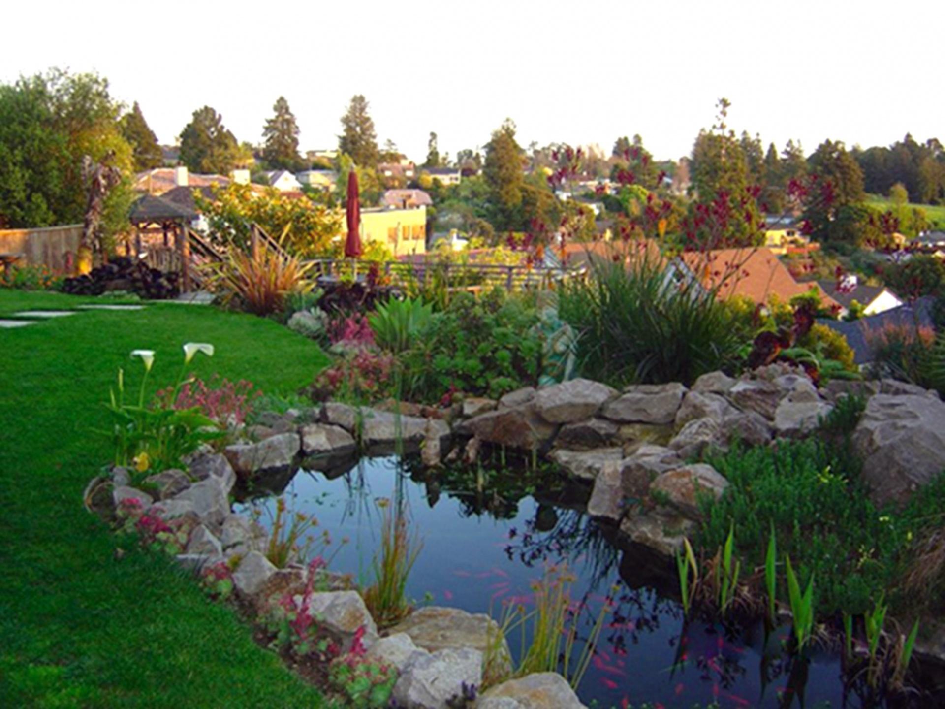 Design Your Back Garden