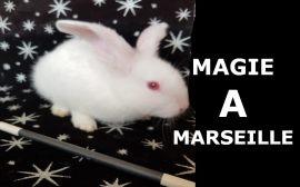 magie à marseille
