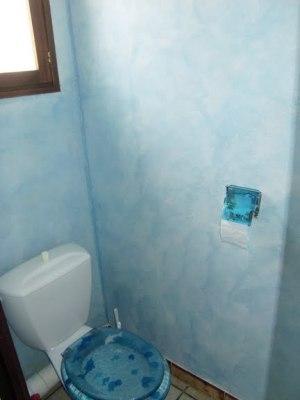 Blog de magicmanu :Aménagement de notre maison, Peinture des WC