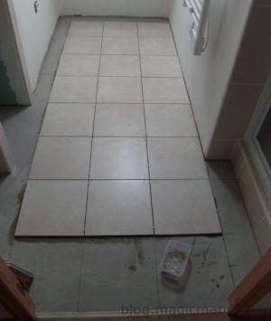 Blog de magicmanu : Aménagement de notre maison, Carrelage sol salle de bain