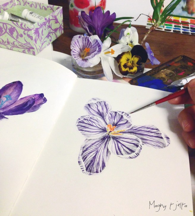 Crocus -krokus, art work painting flowers
