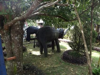 Bukit Genting Elephants