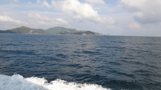 The view from the ferry