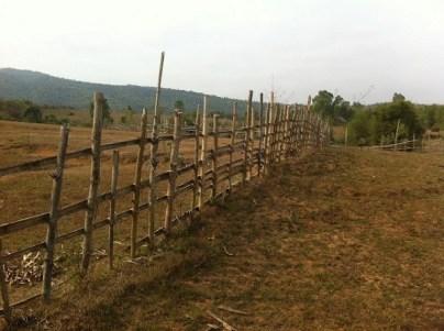 Phonsavan - Plain of Jars Site III -Farm Yard Fences