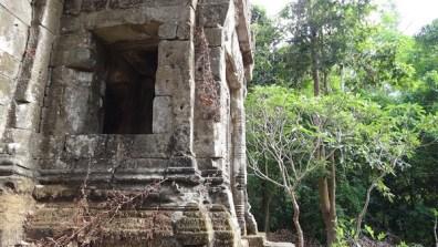 Ruins and Jungle at Angkor