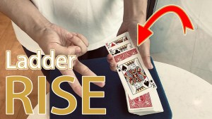 Ladder Rise by Owen video DOWNLOAD - Download