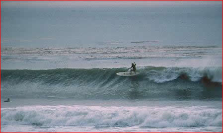 Malaga Cove Surfers