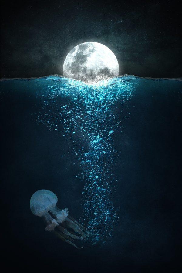 L'eau de Lune
