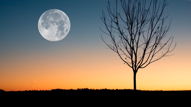 Nouvelle Lune du 24 janvier 2020