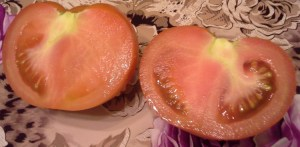 неузрели и зелени домати от Била
