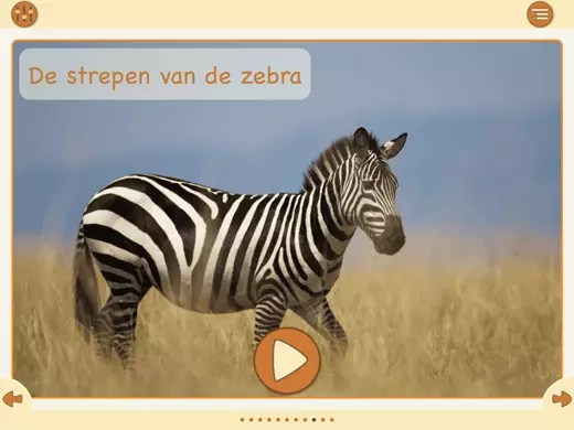 Een begrijpend lezen oefening over de Zebra.