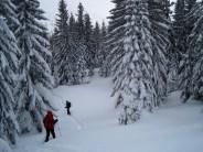 Schneeschuhwandern Kuhschneeberg