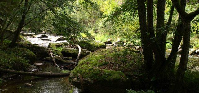 Genuss und Fluss im Waldviertel am Sonntag, 14. September 2014