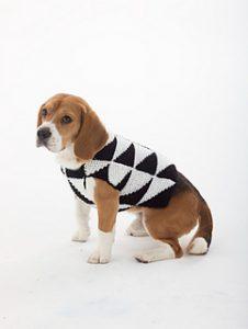 Dog Sweater di Lion Brand Yarn