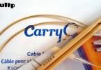 Carry C Tulip