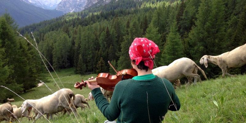 Pastore donna che suona il violino al pascolo