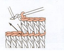 عامود خلفية1