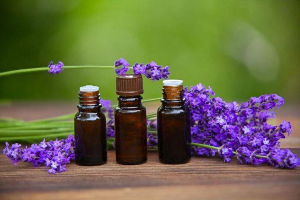 الخصائص العلاجية لزيت اللافندر