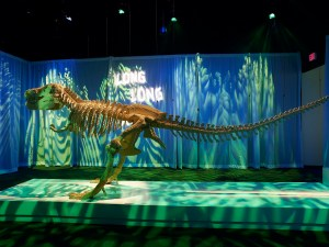 dinosaur-skeleton2