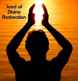 Seed of Divine Restoration Long Distance Energy Healing