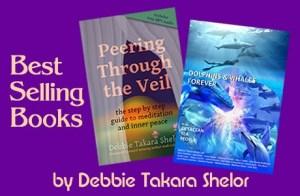 Bestselling Books by Debbie Takara Shelor