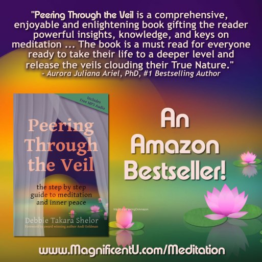 Bestselling Meditation Book Peering Through the Veil