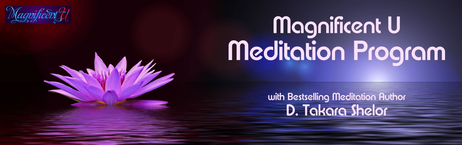 Learn how to meditate with the online meditation ecourse