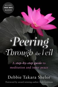 Bestselling Meditation Book Peering Through the Veil