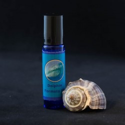 Dolphin Energy Healing Formulas Flower Essences Gem Essences Aromatherapy