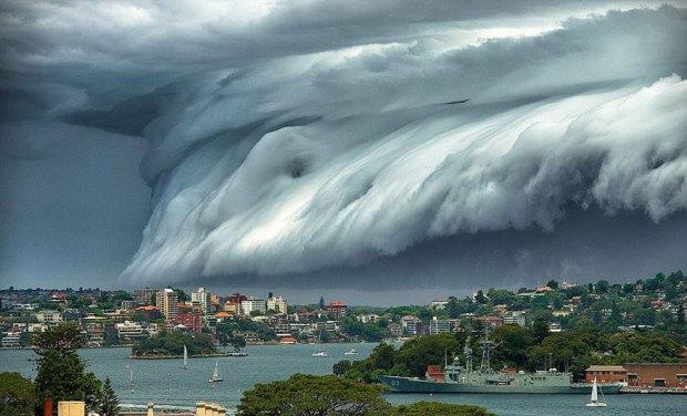 Em New South Wales, Austrália - Novembro/2015 | Crédito da foto