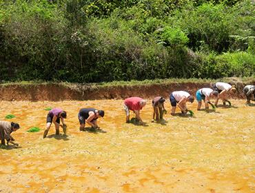 Voyagez avec une agence responsable et solidaire voyage Madagascar.