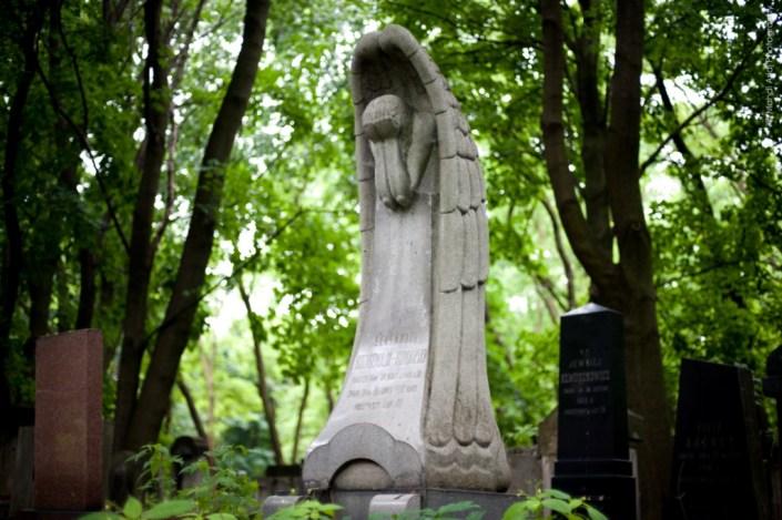 The jewish cemetary of warsaw - Poland - Le cimetière juif de Varsovie