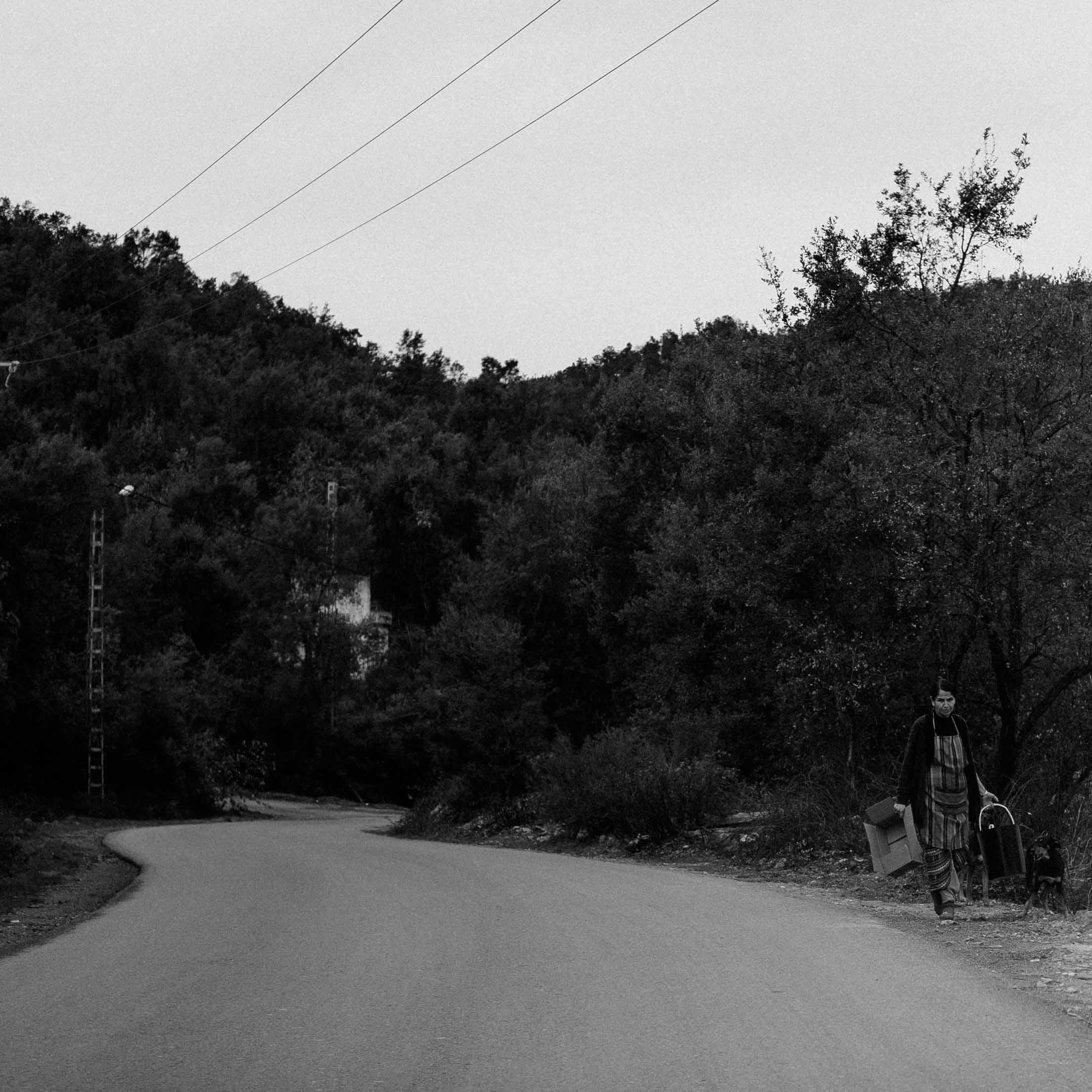 Sur la route d'Azeffoun 2