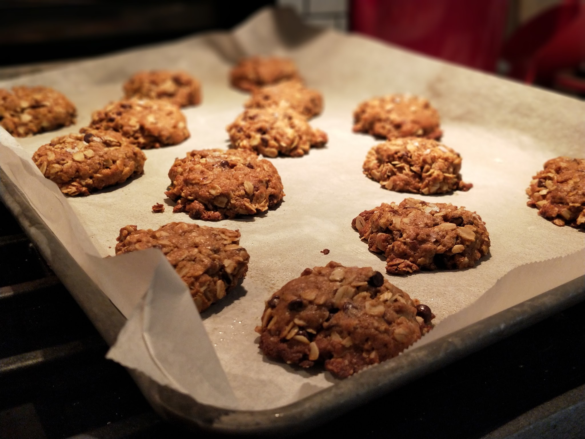 Chocolate Oat Lactation Cookies