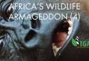 AFRICA'S WILDLIFE ARMAGEDDON (4)