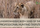 Controversy Surrounding Hunting, The Captive Breeding of Lions and The Hunting of Captive-Bred Lions, in South Africa